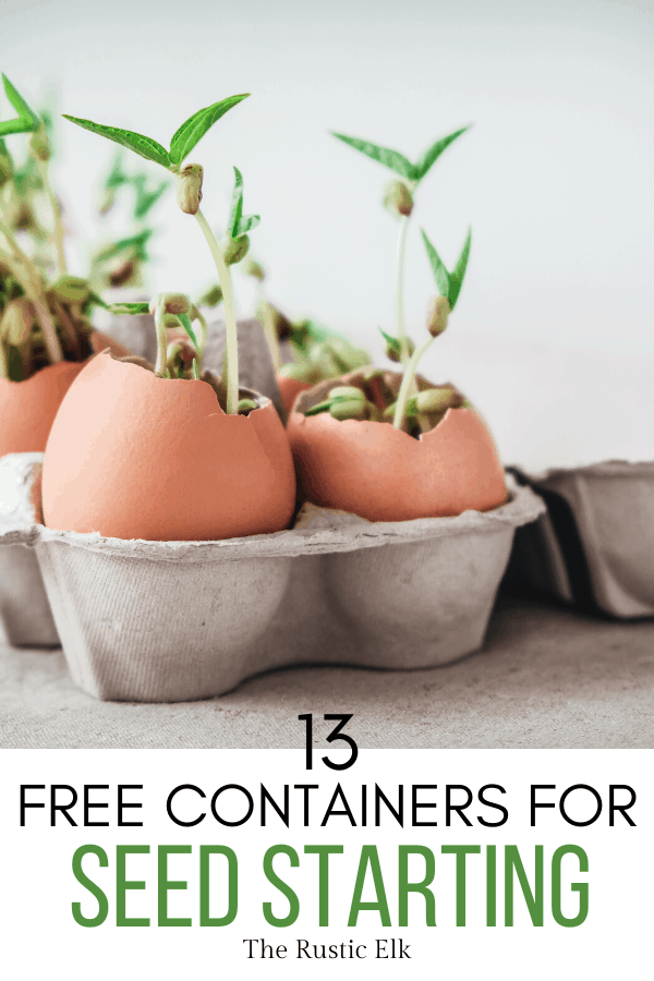 Seed starting containers can often be found around your house.