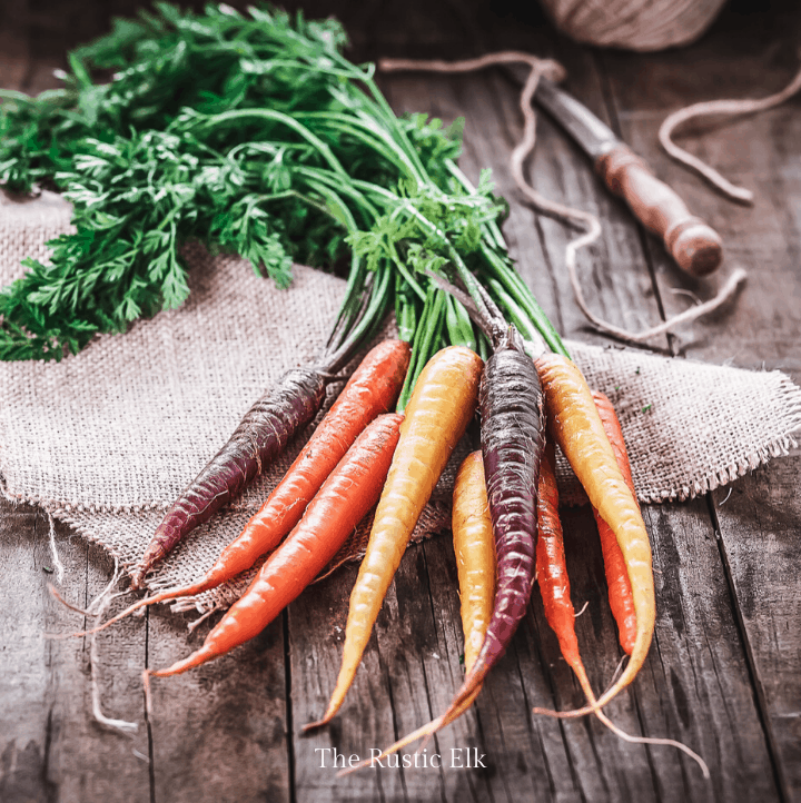 Carrots are a root vegetable that stores well making it important for self sufficiency.